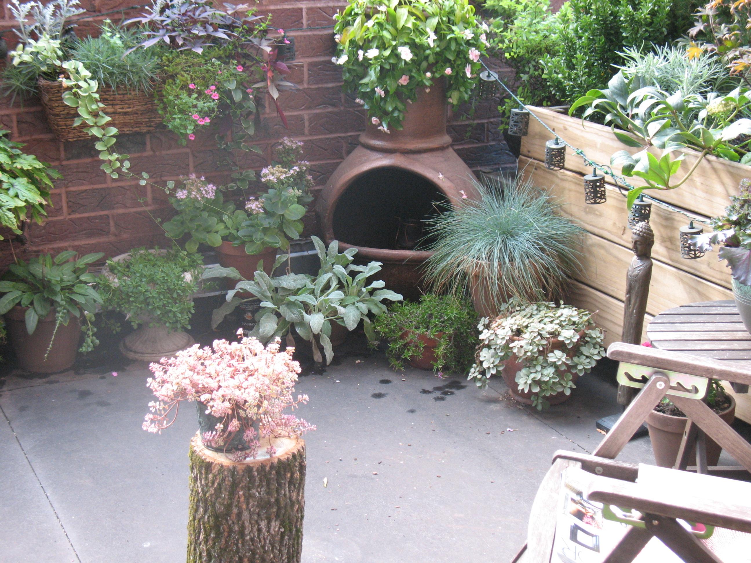 roof gardens amy christensen garden design like this